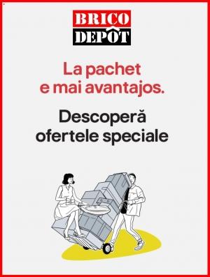 Catalog Brico Depot